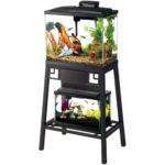 The Best 10 Gallon Fish Tank Stand Option: Aqueon Forge Aquarium Stand