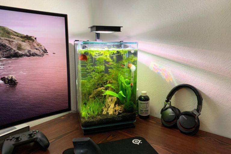 Marineland Portrait Fish Tank Review